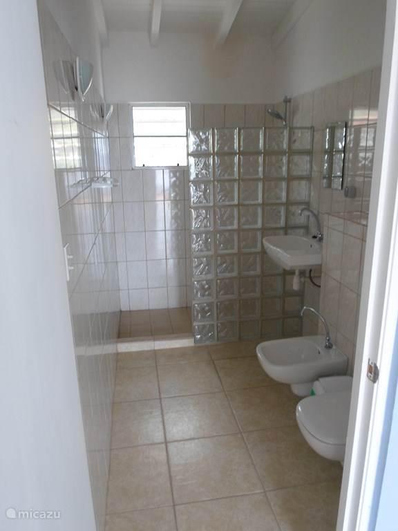De badkamer boven met douche, wastafel, bidet en toilet
