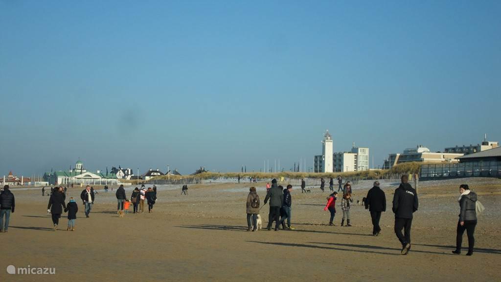 Heerlijk wandelen langs de Noordwijkse stranden.