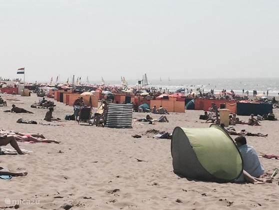 Heerlijk op het mooie schone strand, genieten van de rust en de fanatastische zee.