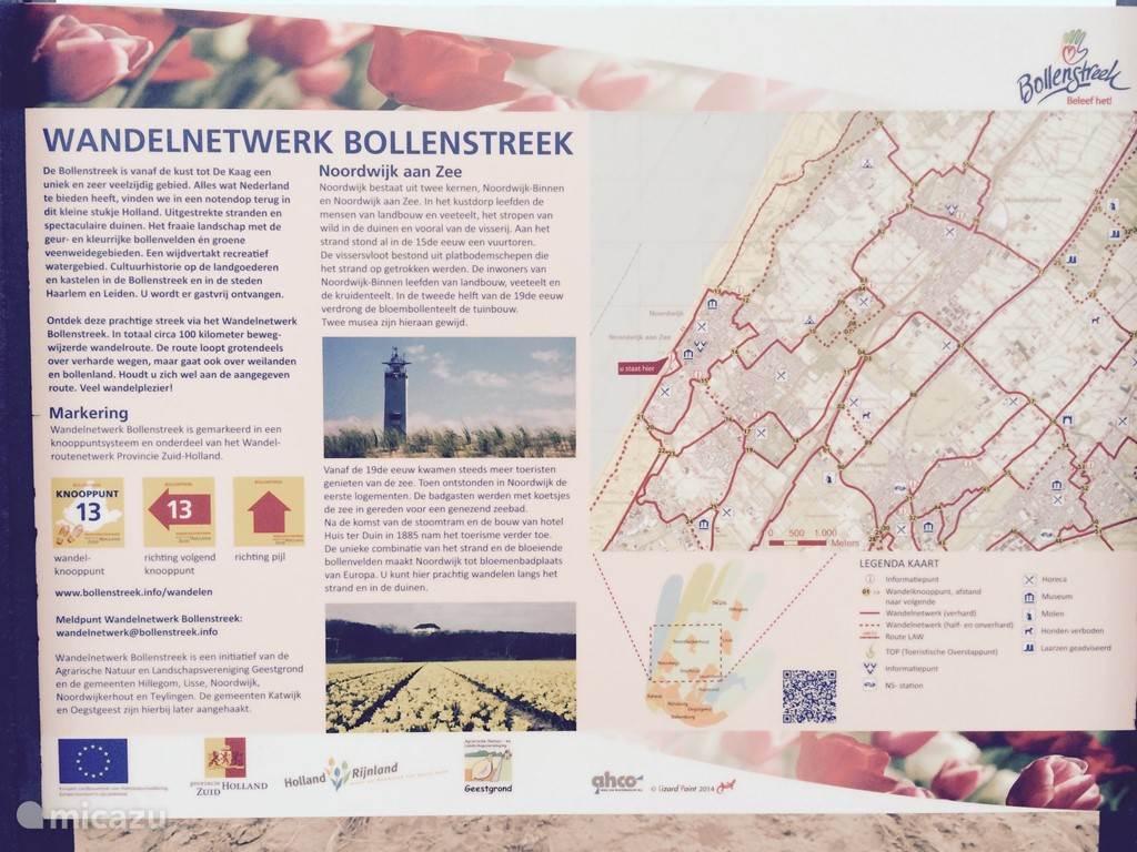 De Bollenstreek is met Leiden en het Kagerplassengebied tezamen een uniek en zeer veelzijdig gebied. Alles wat Nederland te bieden heeft vindt u hier in een notendop.  Ontdek deze prachtige streek via het Wandelnetwerk Bollenstreek. Kijk op http://www.bollenstreek.info/nl/zien-doen/wandelen