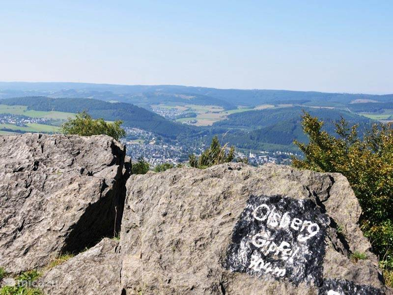 One of the trails leads you along the top of the Olsberg where you also enjoy the breathtaking views.