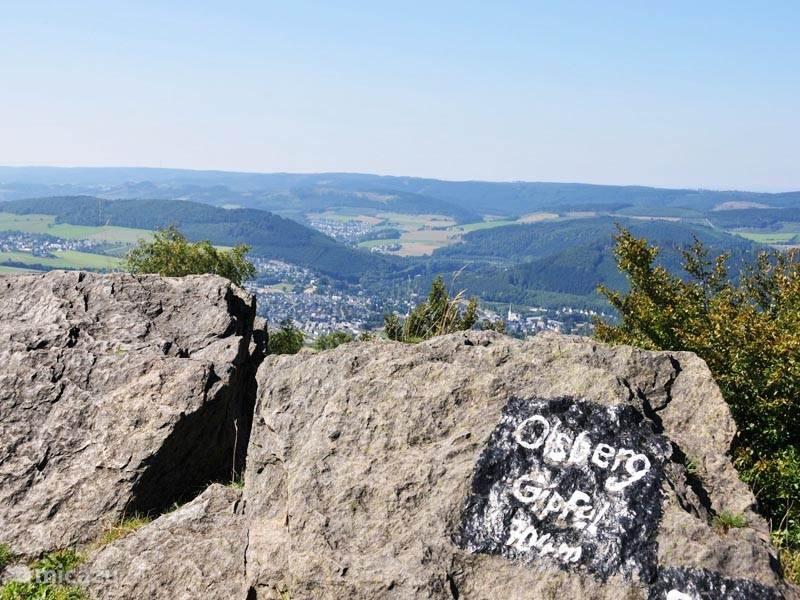 Een van de wandelroutes voert u langs de top van de Olsberg vanwaar u ook kunt genieten van de adembenemende uitzichten.