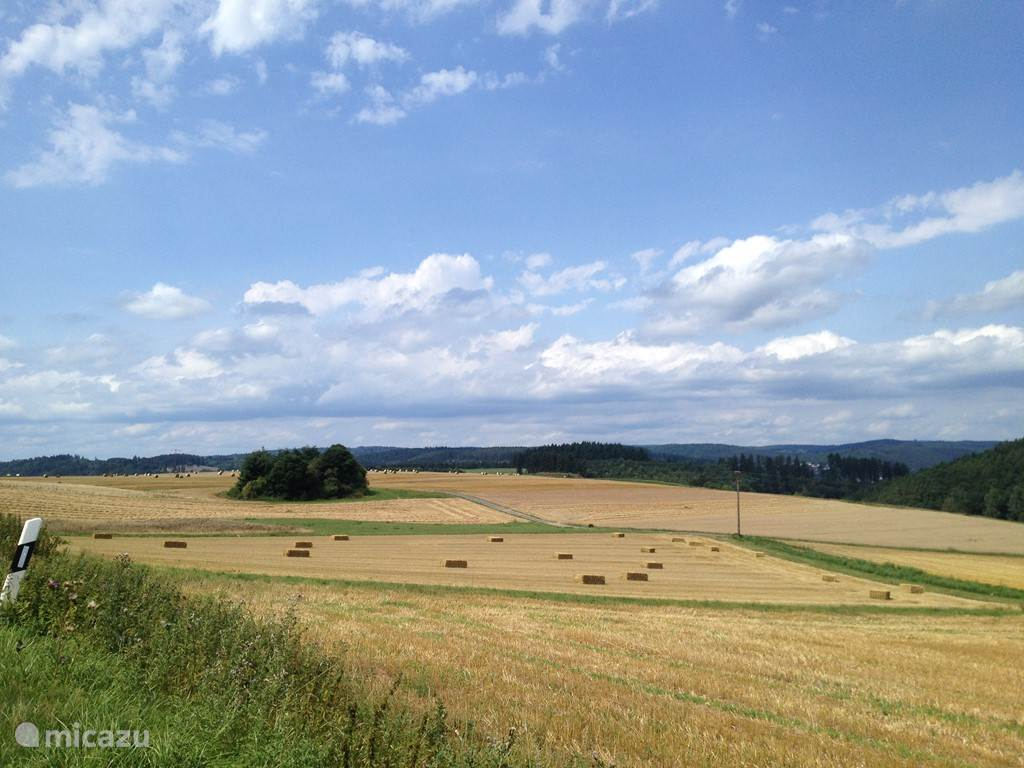 Zomer in Hessen