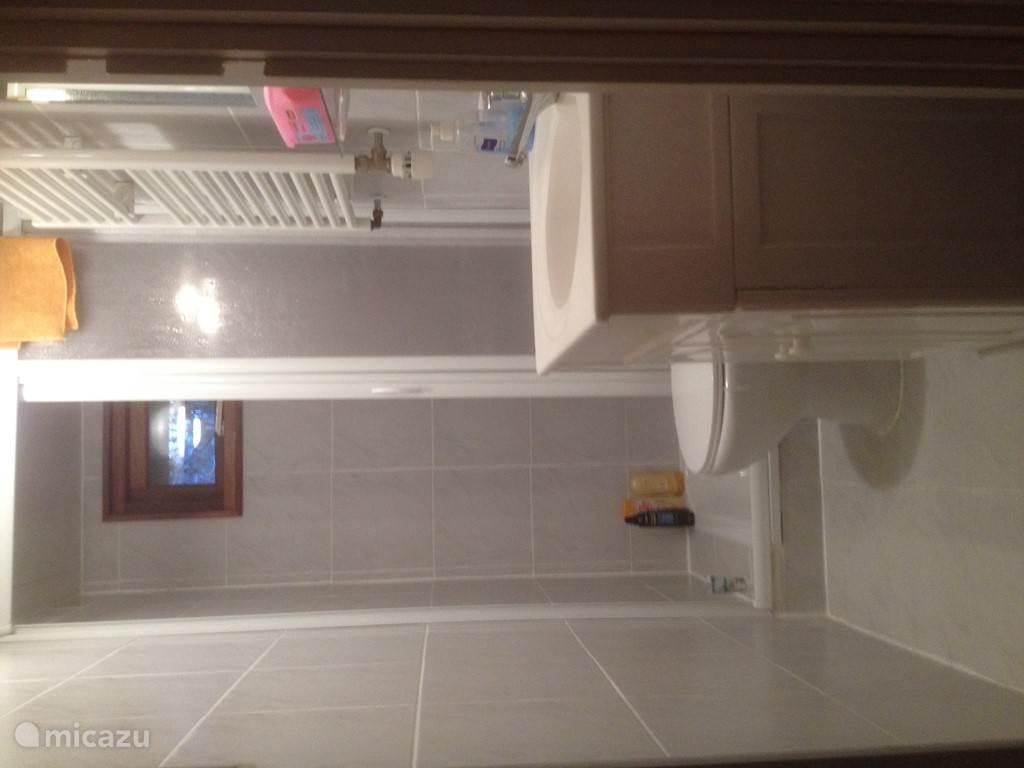 Een blijk in de badkamer met douche, wc en wasbak.