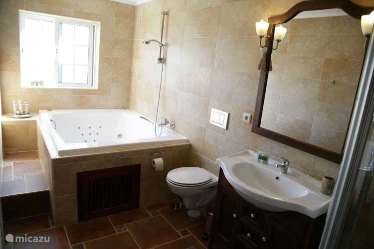 1 van de badkamers met douche cabine toilet en jacuzzi