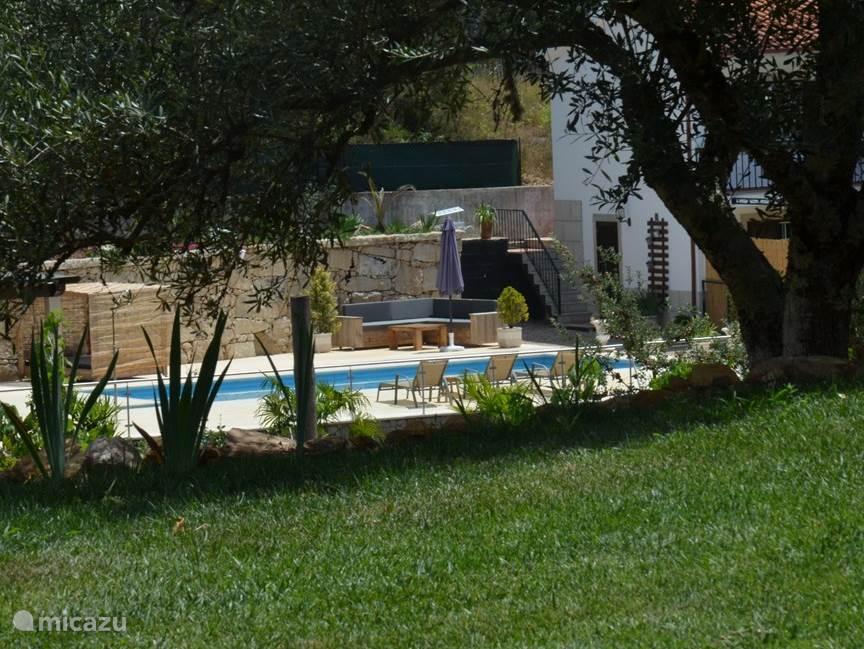 Verwarmd zwembad met barhuisje en zeer ruim terras