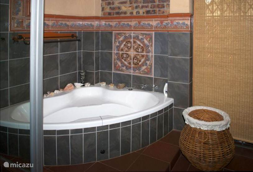 Ensuite badkamer master bedroom.