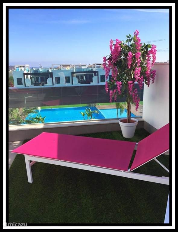 Onze nieuwste aanwinst deze reis, een fleurig boompje in de Casa Martinez kleuren....