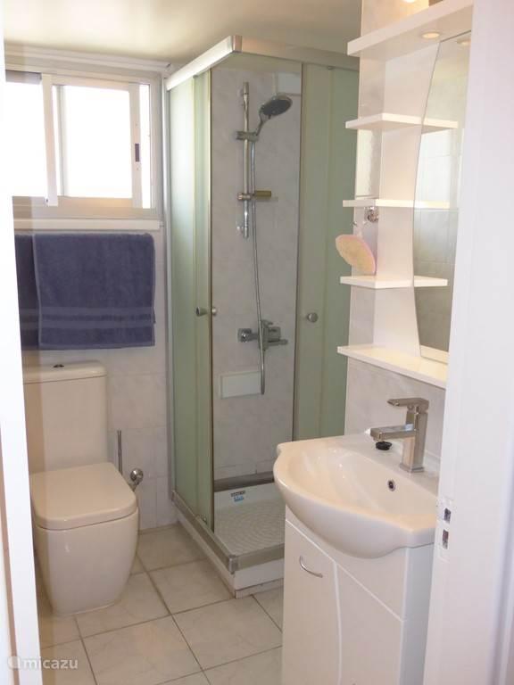 badkamer 1, met douche