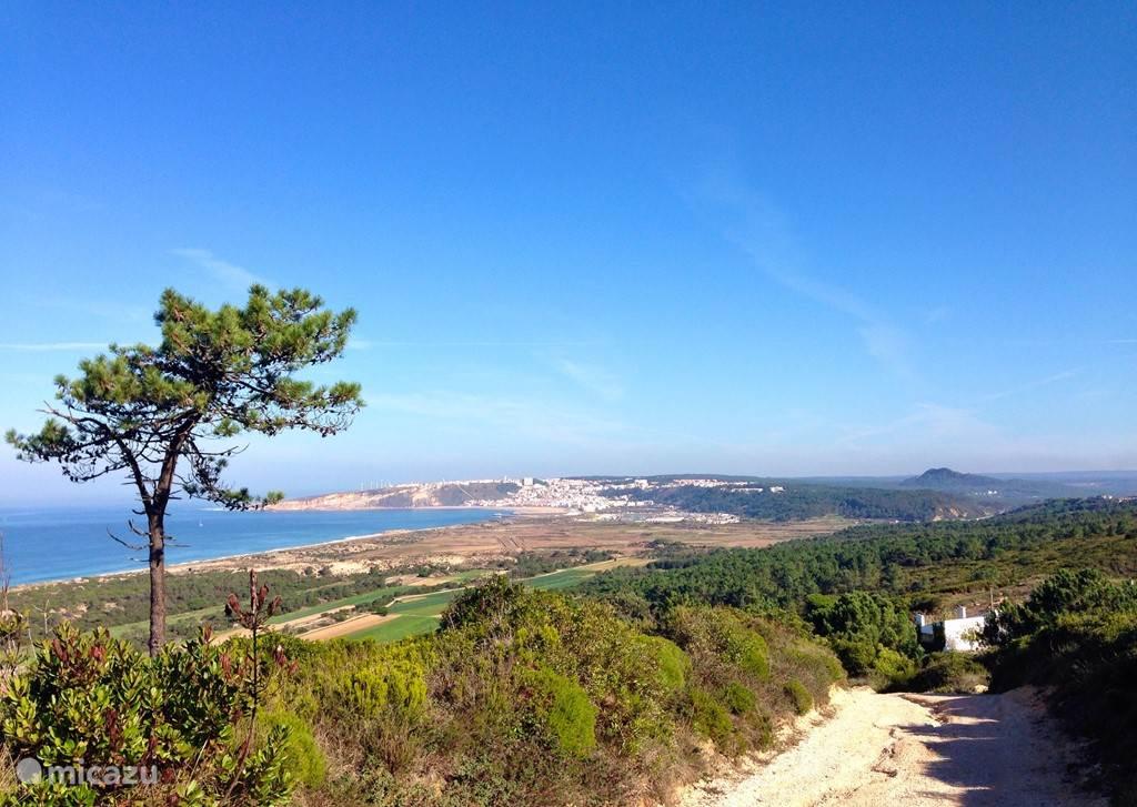 Vakantiehuis Portugal, Costa de Prata, Casal Do Abegao - Alcobaca vakantiehuis Casal Morgado