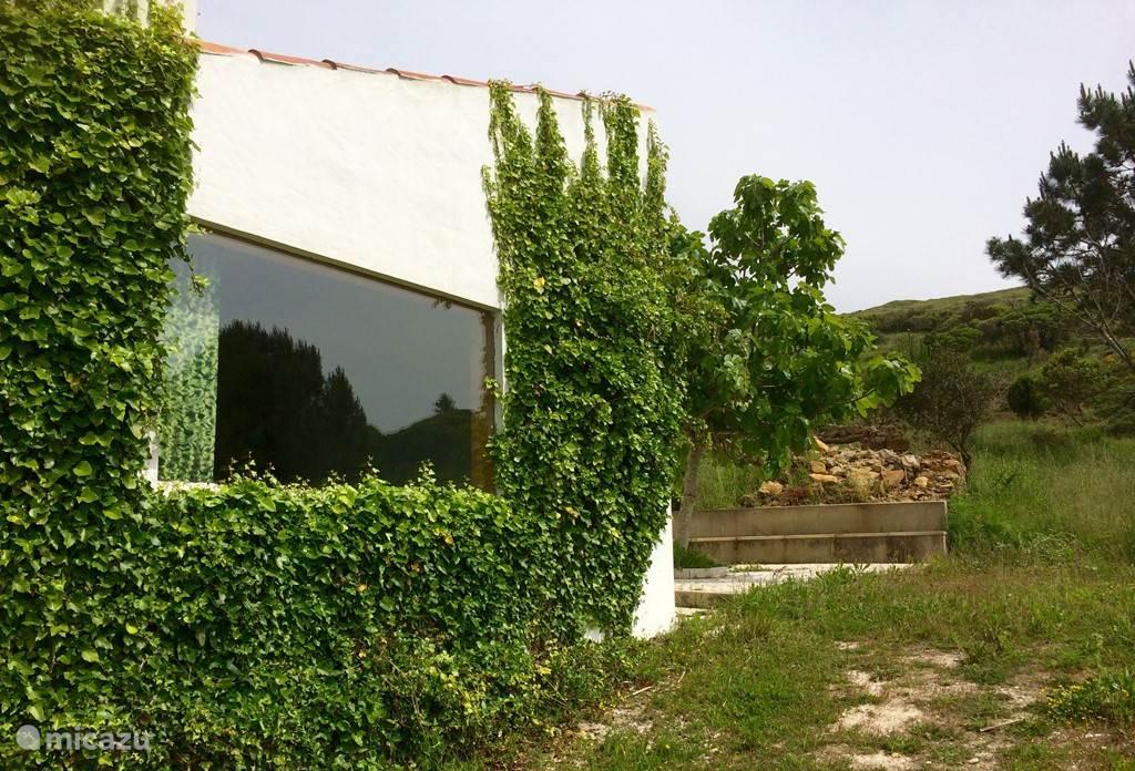 Een zijkant van Casal Morgado