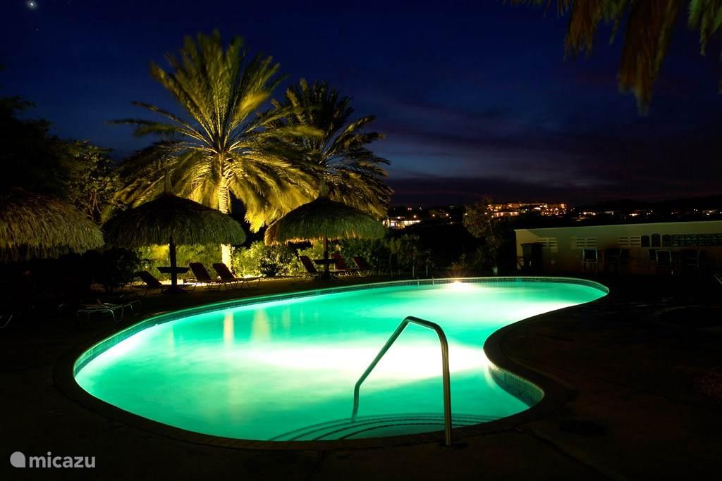 Zwembad in de avond ook geopend!