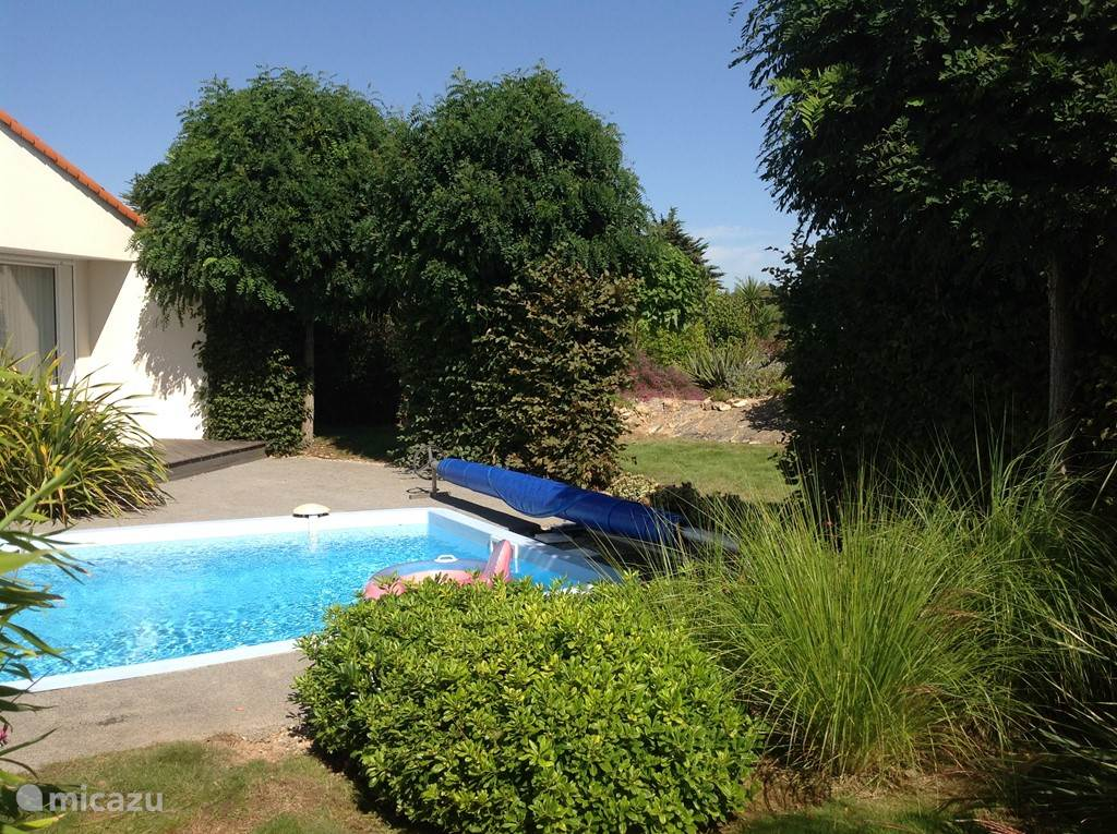 Sunny garden with heated pool. Lots of privacy by location on the edge of the park.