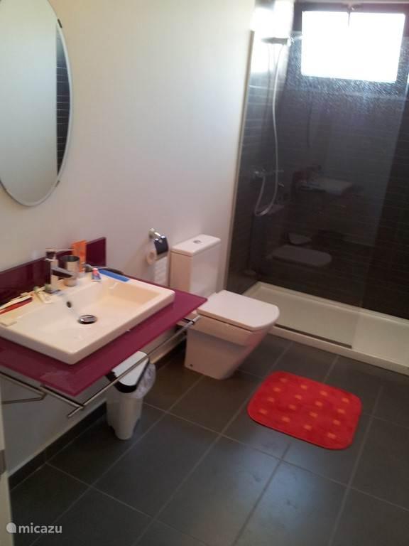 De 2 badkamers zijn vooral functioneel en zijn beide naast een toilet ook voorzien van een wastafel en een douche.