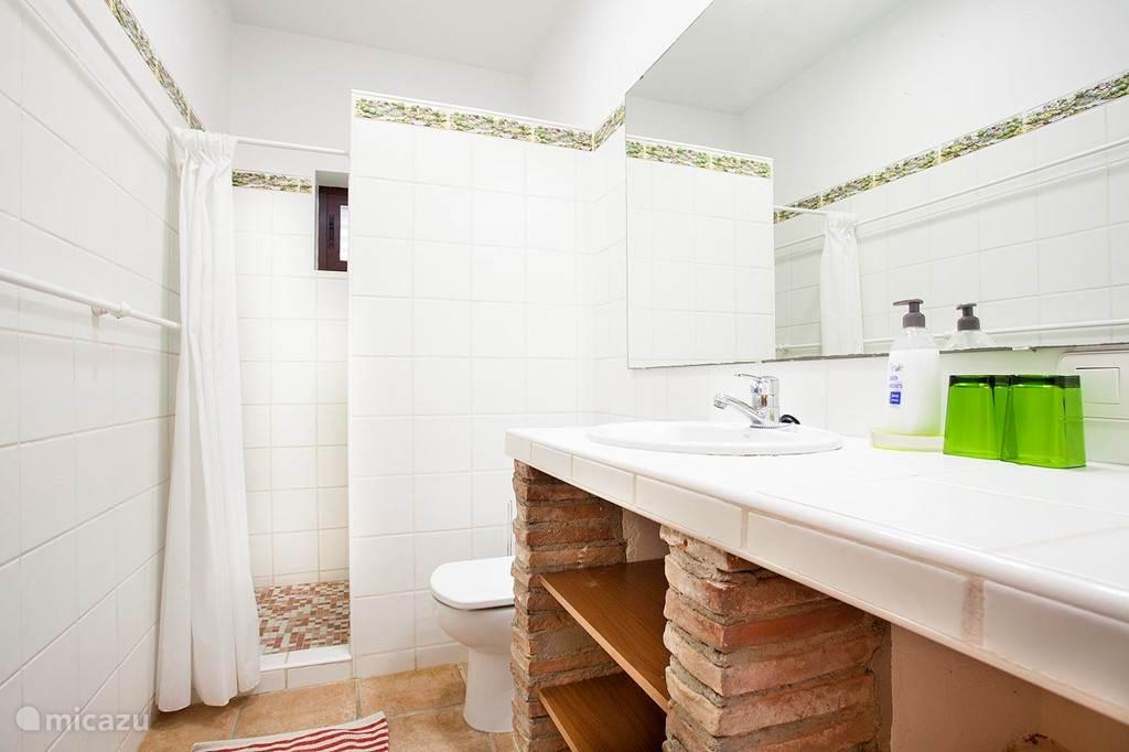 Derde badkamer met douche