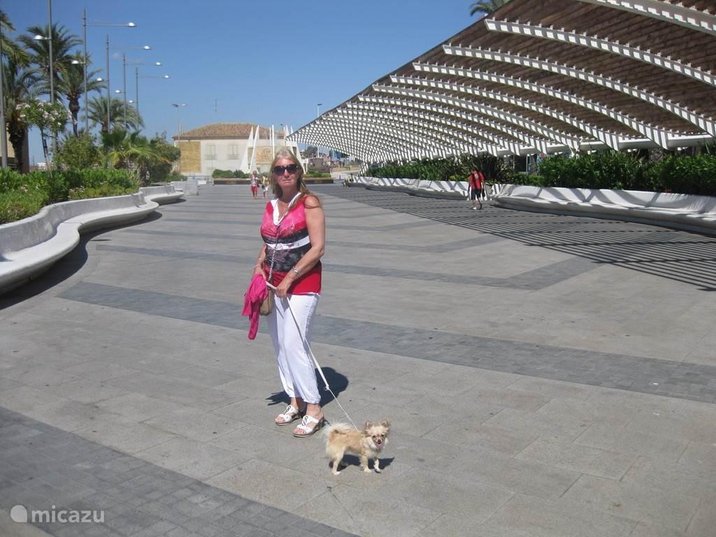 Promenade Torrevieja