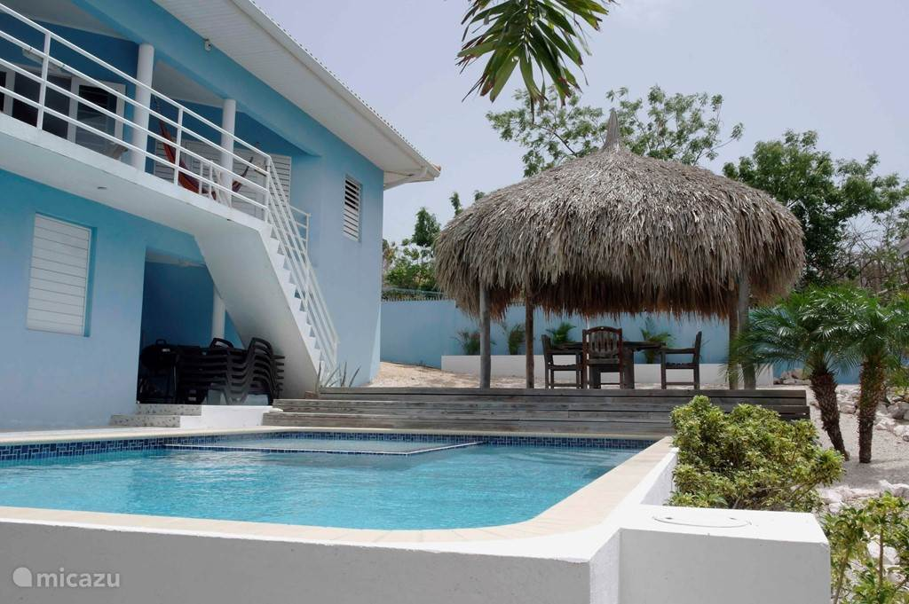 Pool with its palapa, which offer plenty of shade.
