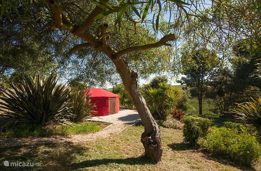 Vakantiehuis Portugal, Costa de Prata, Alcobaça glamping / safaritent / yurt De Yurt