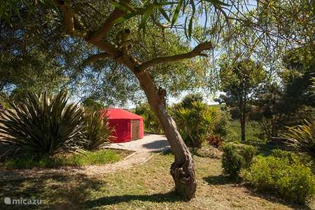Vakantiehuis Portugal, Costa de Prata, Junqueira - glamping / safaritent / yurt De Yurt