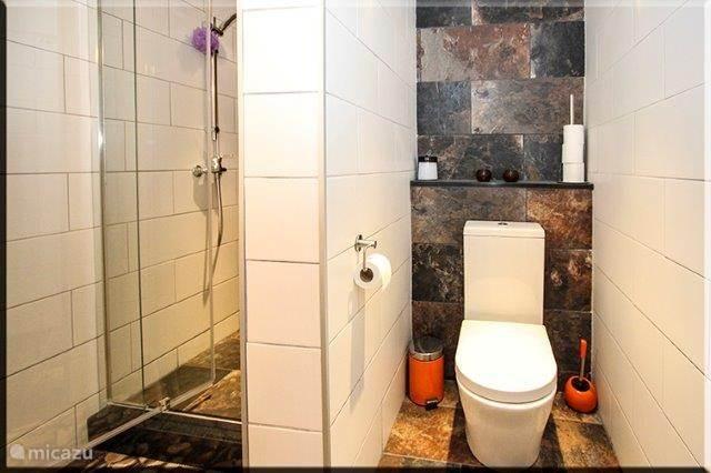 badkamer in het appartement beneden