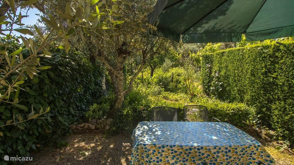 De tuin van Casinha Oliveira
