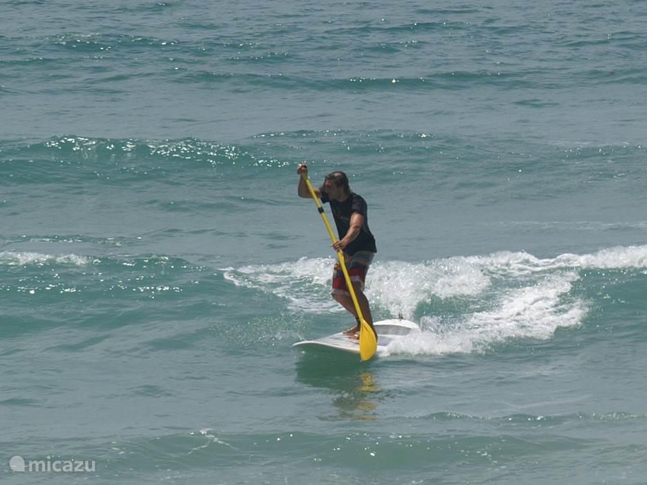 Volop surf en SUP mogelijkheden