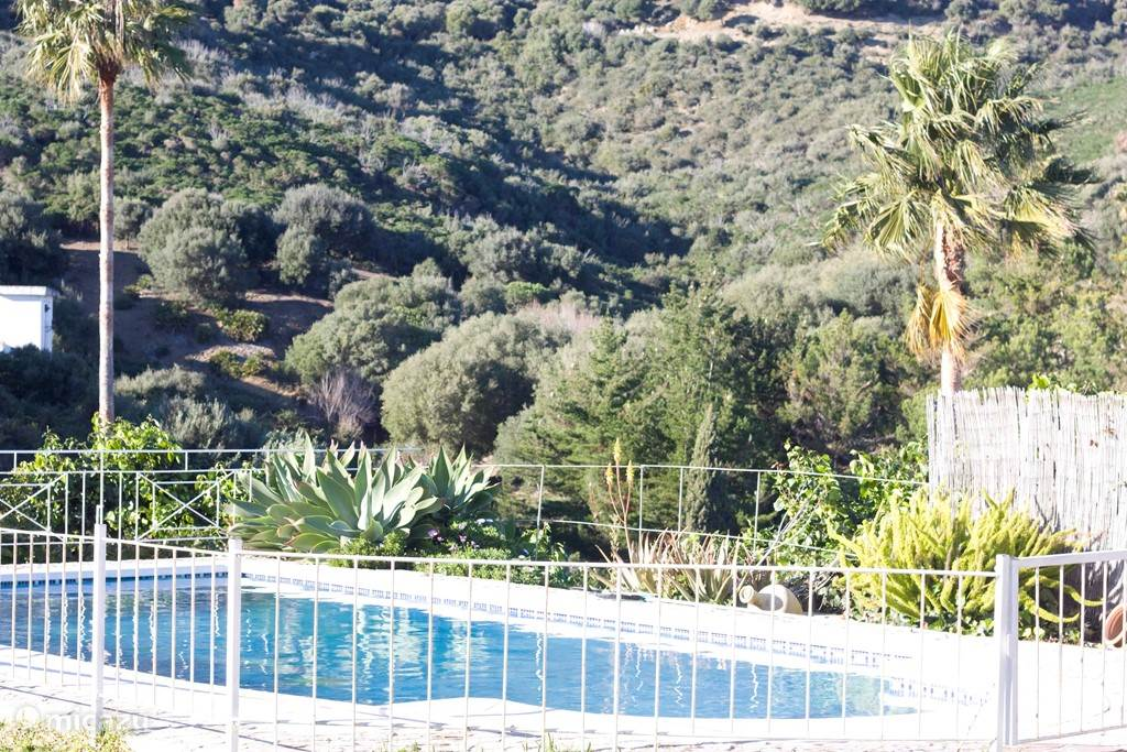 Groot prive zwembad aan de andere zijde van het huis: groot en kinderveilige omheining