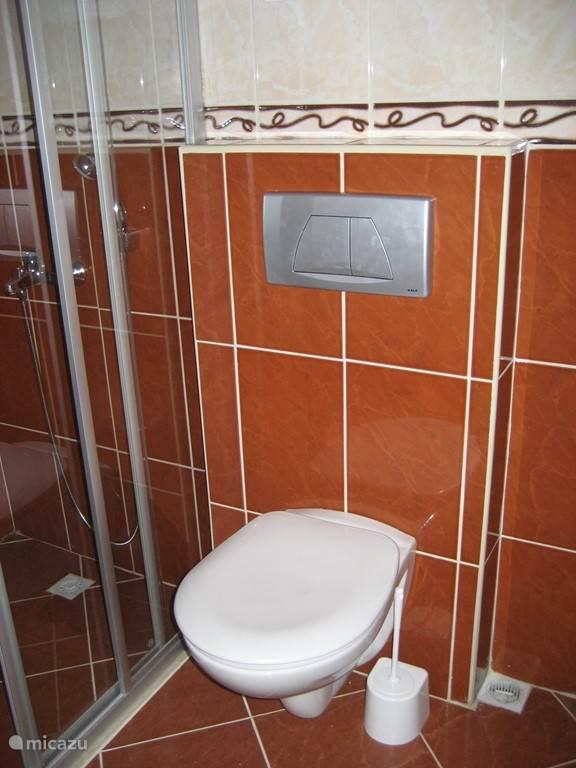 Badkamer boven met inloopdouche.