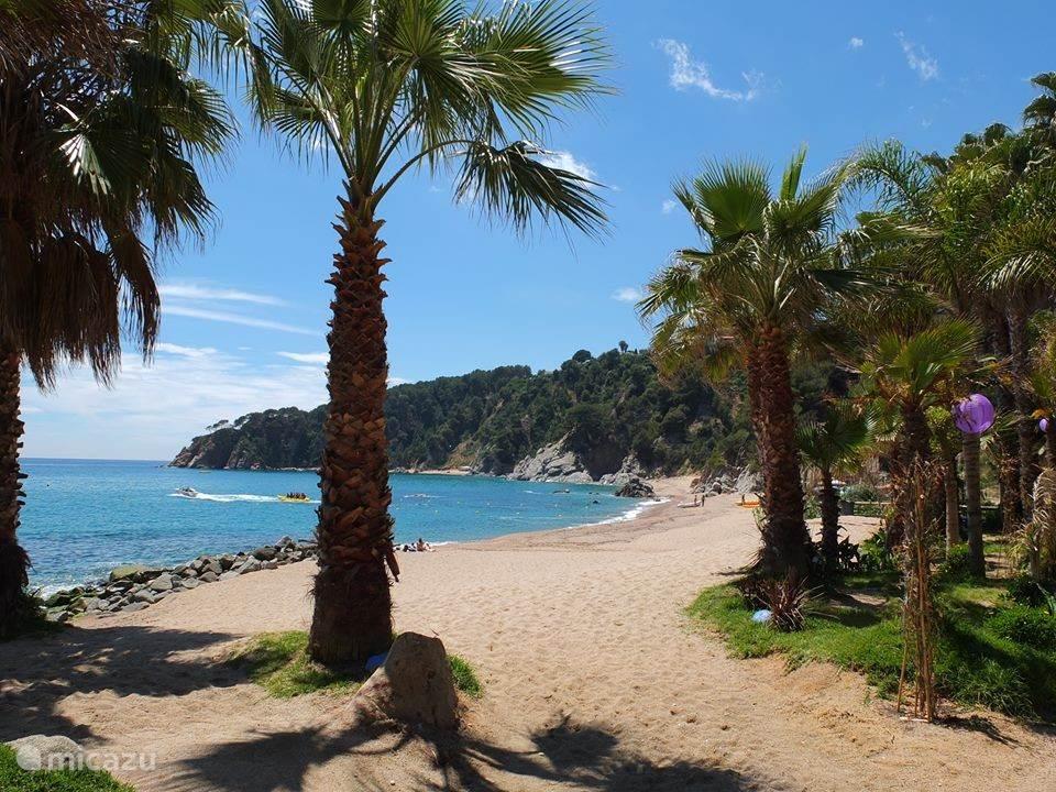 Op loopafstand (200 meter) bevindt zich het strand Platja Llorel. Met een beachclub, duikschool en er zijn diverse activiteiten op zee mogelijk. Natuurlijk kun je ook gewoon zonnen of naar de prachtige Costa Brava kijken.