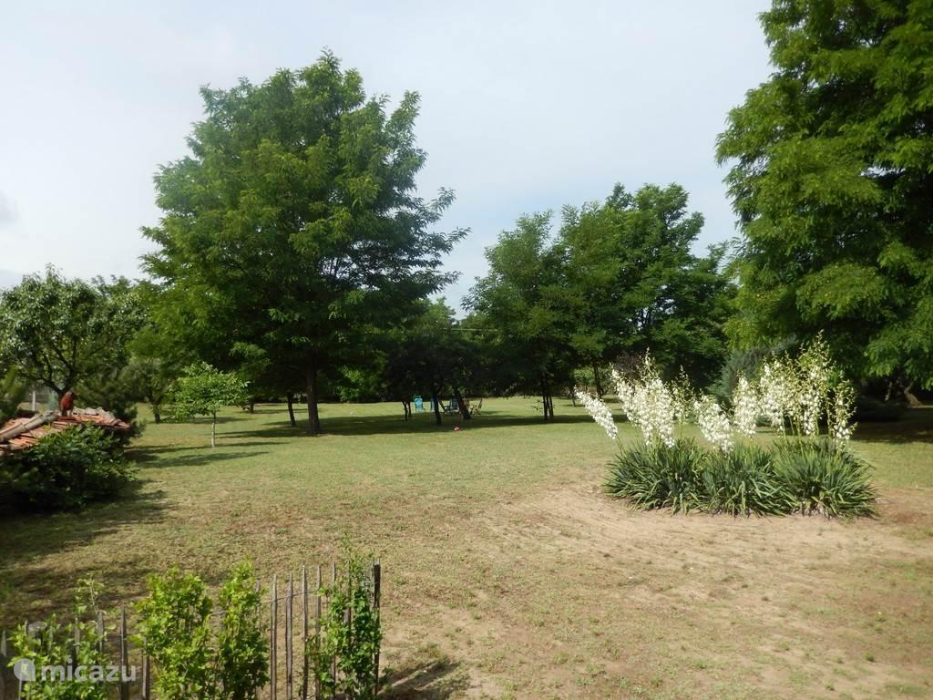 Grote tuin met veel privacy