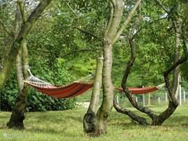 Heerlijk ontspannen in de oude boomgaard.