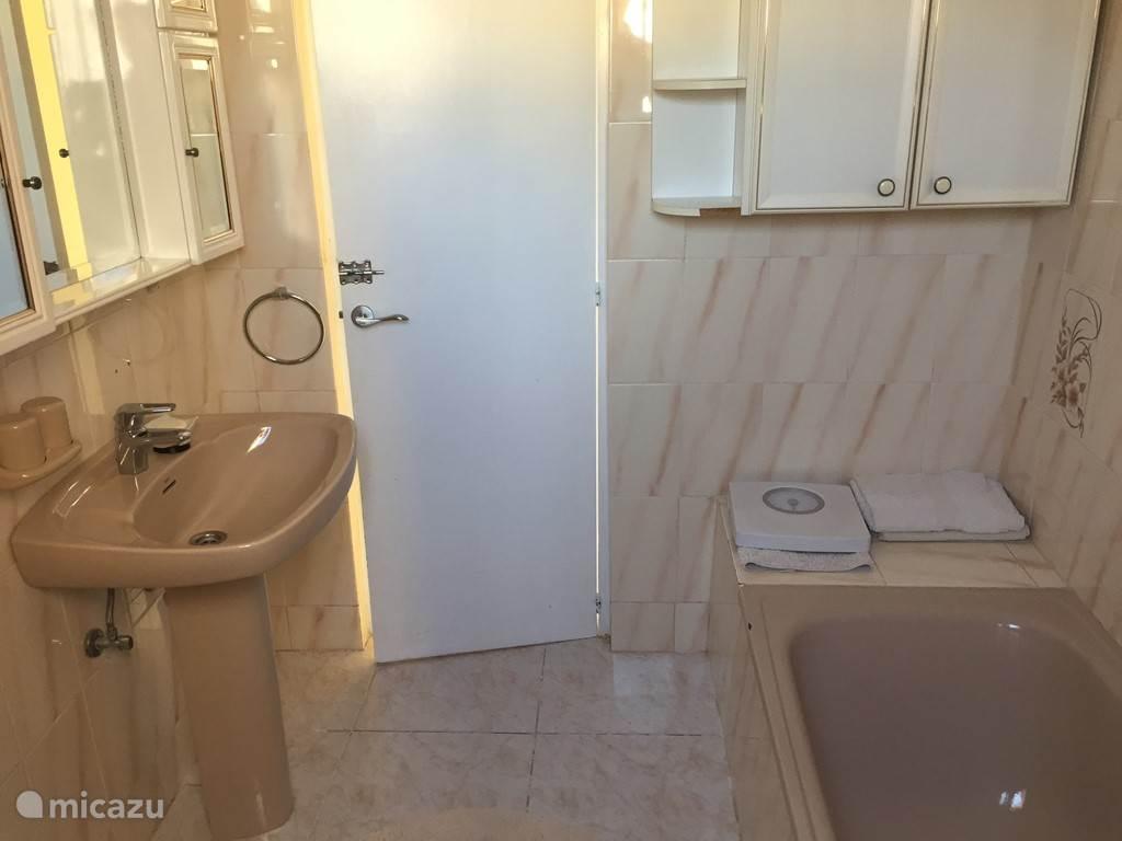Badkamer voorzien van ligbad en makkelijk toegankelijk vanuit de centrale hal (te zien op de volgende foto)