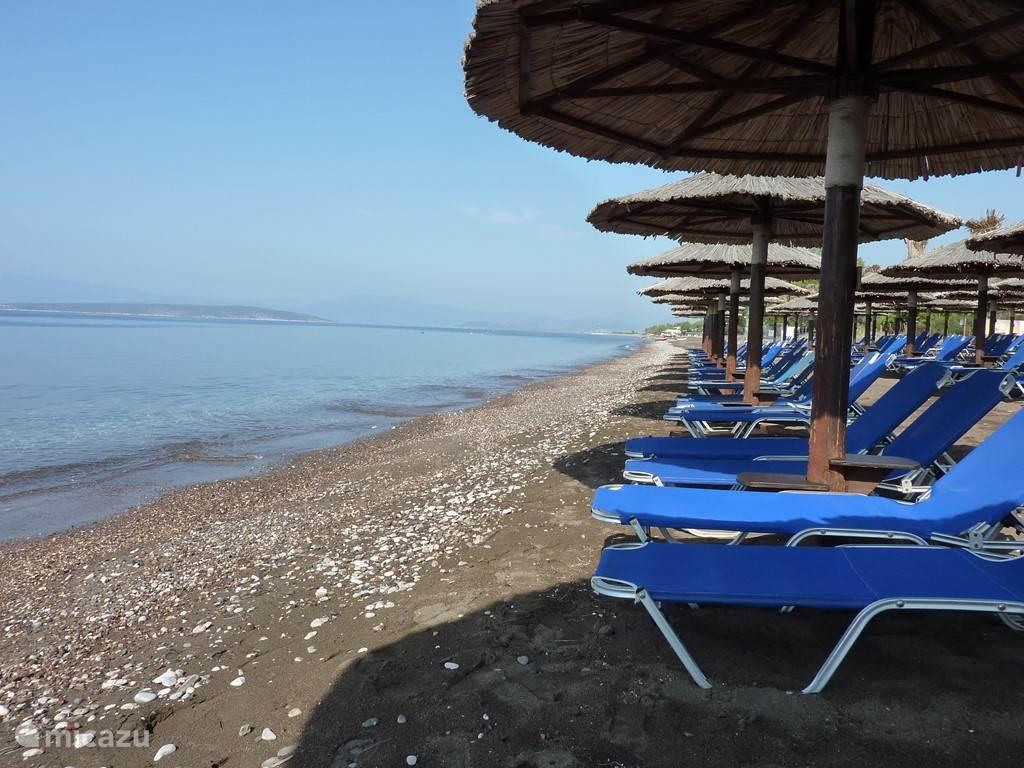 Het strand met parasols, ligstoelen, beach bar en nog veel meer leuke en sportieve zaken.  De Beach bar Baraki is zomers het ontmoetingspunt voor de Intellectuele Griekse 25+ jeugd uit Athene.