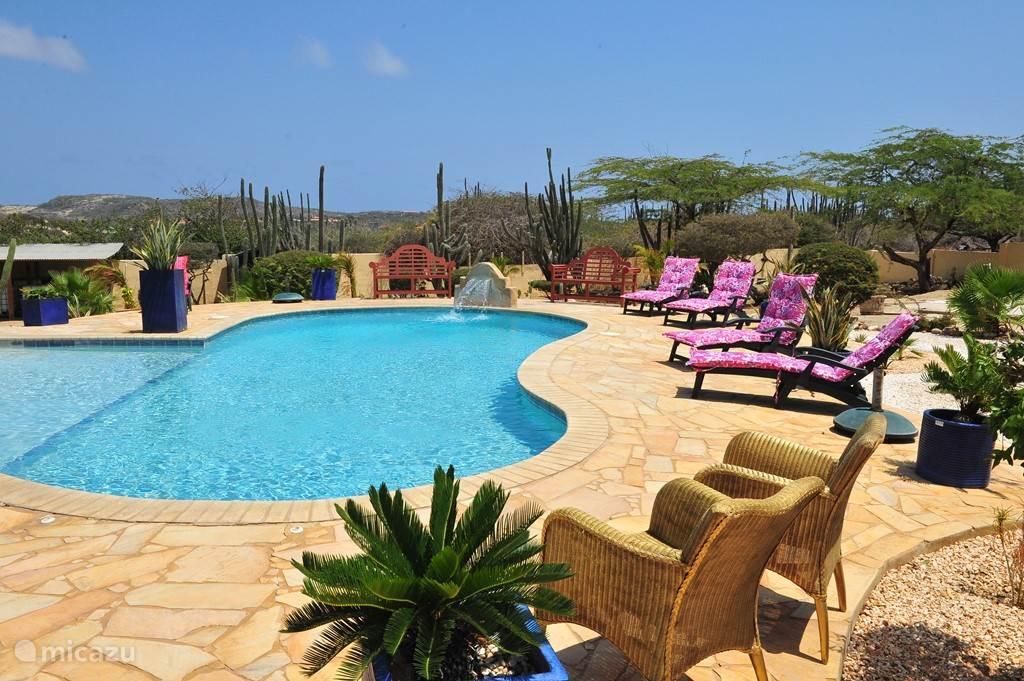 Uitzicht over het zwembad en de aangelegde tropische tuin