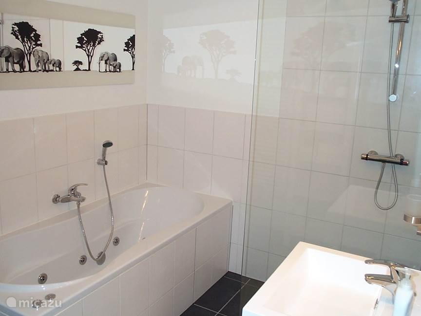 Vanuit de hal kunt u naar de grootste van de twee aanwezige badkamers, met toilet, whirlpool, inloopdouche en wastafel.