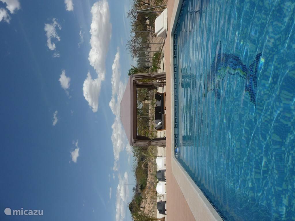 privé zwembad met comfortabel zitje