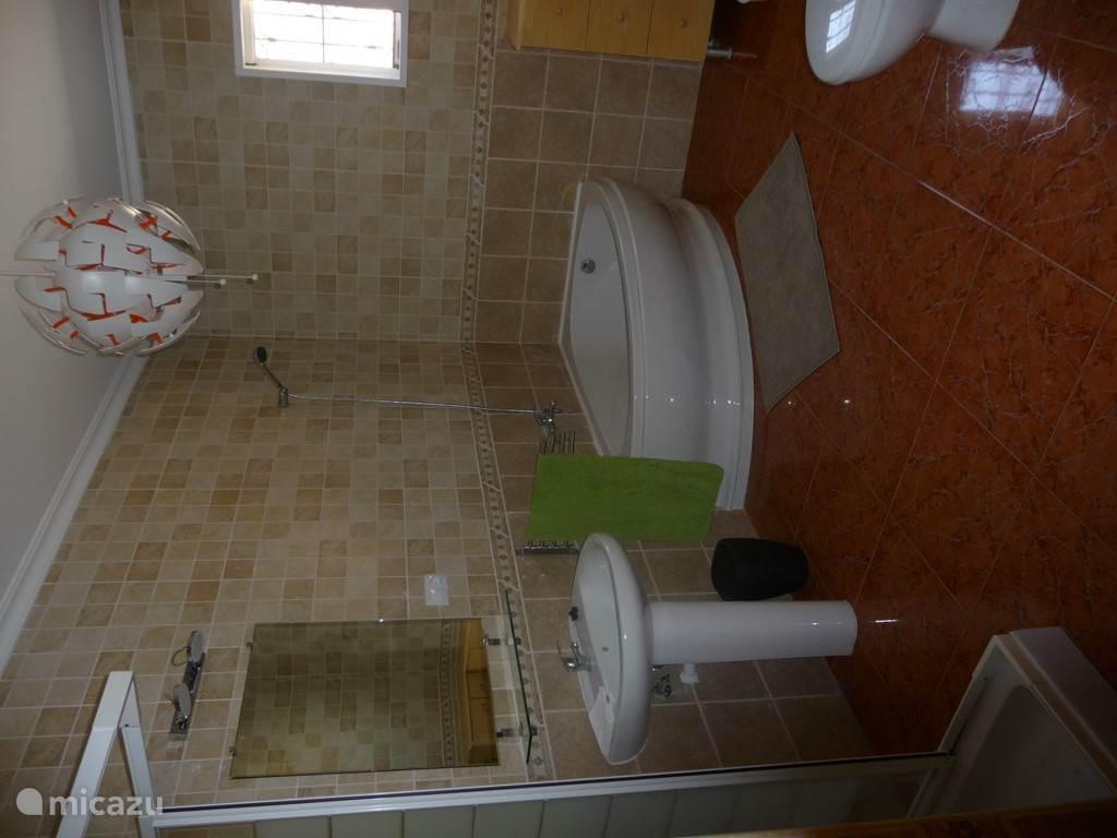 badkamer met douche, bad, wc en bidet