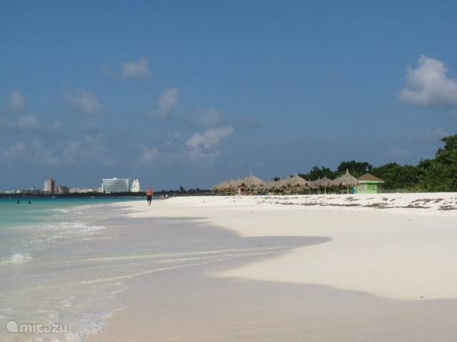 Eagle Beach, one of the most beautiful beaches in Aruba