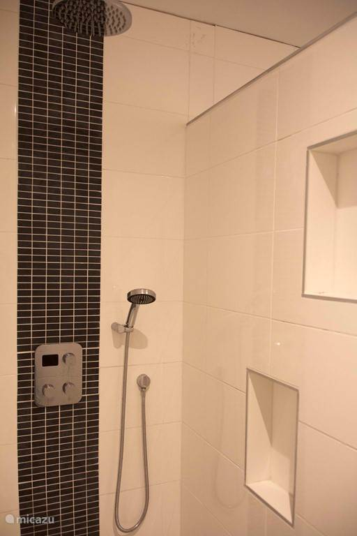 The lovely rain shower with additional hand shower