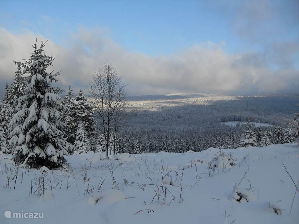 Uitzicht in Harz