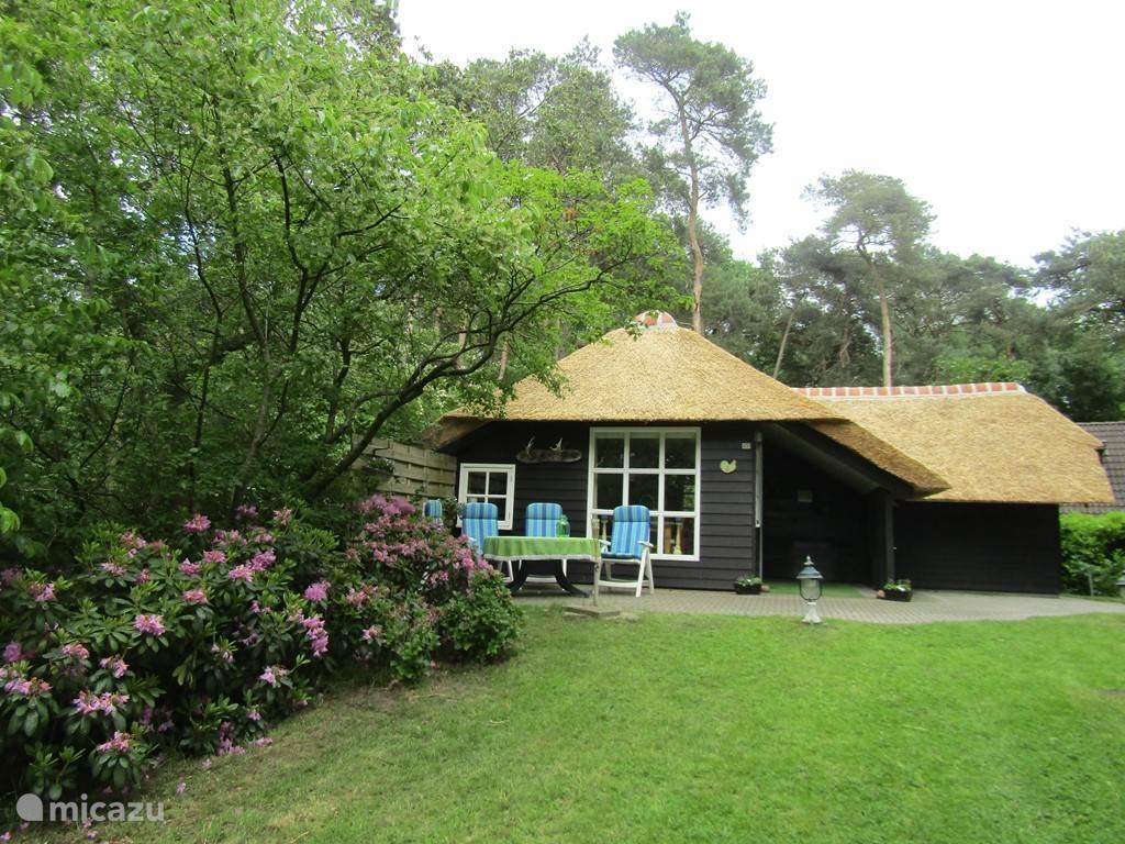 Vakantiehuis Nederland, Overijssel, Dalfsen bungalow De Bosterp