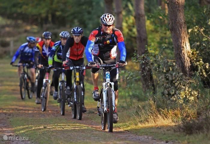 Mountainbiken op mountainbike route Amerongen/Overberg Het huisje ligt pal aan deze route en is daarom uniek. Er is in 2014 een geheel nieuw parcours gemaakt waarbij 4 mountainbikeparcours met elkaar verbonden zijn. Overberg/Amerongen, Leersum, Kwinteltooijen, en Rhenen. Prachtig mooie tracks!