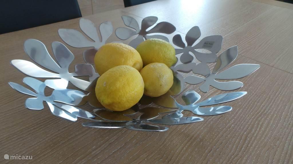 citroenen uit eigen tuin