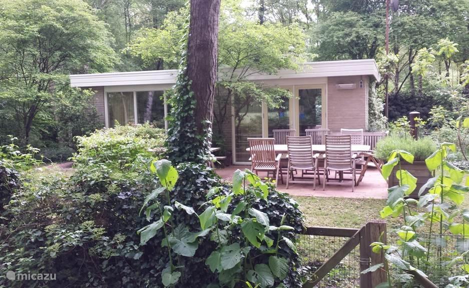 Vakantiehuis Nederland, Overijssel, Ommen - bungalow Rust & Ruimte in Ommen