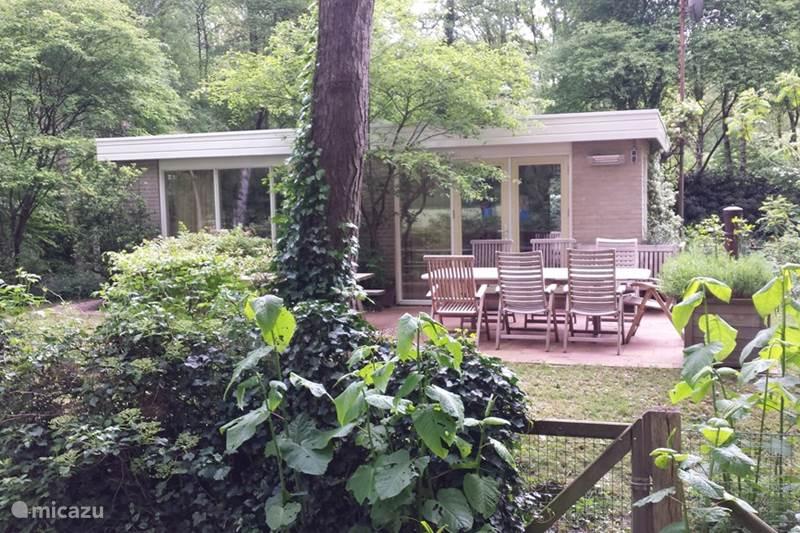 Vakantiehuis Nederland, Overijssel, Ommen Bungalow Rust & Ruimte in Ommen