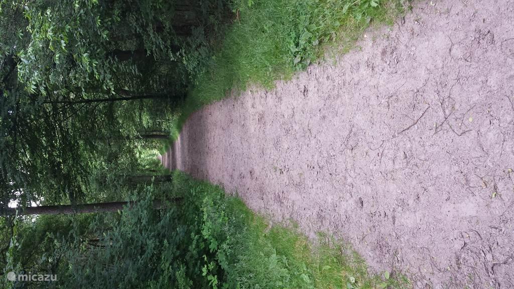 Vanuit de woning loopt u in 15 minuten over dit pad naar Herberg de Klomp in Vilsteren.