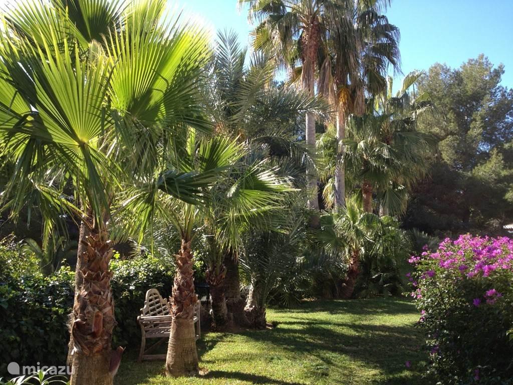 Mediterrane tuin met veel groen en gras