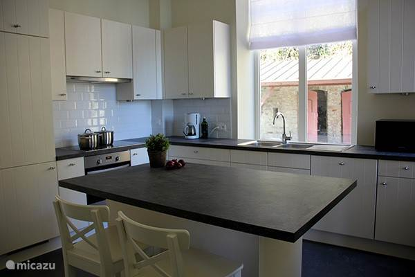 Fully equipped kitchen with oven, microwave, coffee maker, dishwasher, induction hob and large fridge