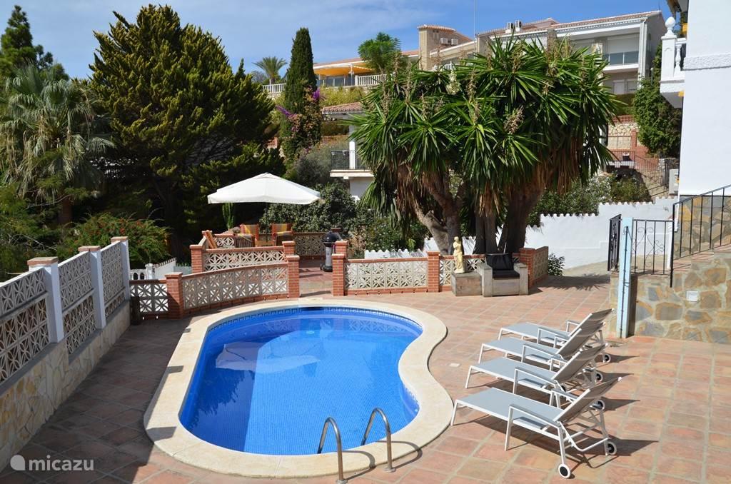 Zwembad en luxe, lichte zonnebedden