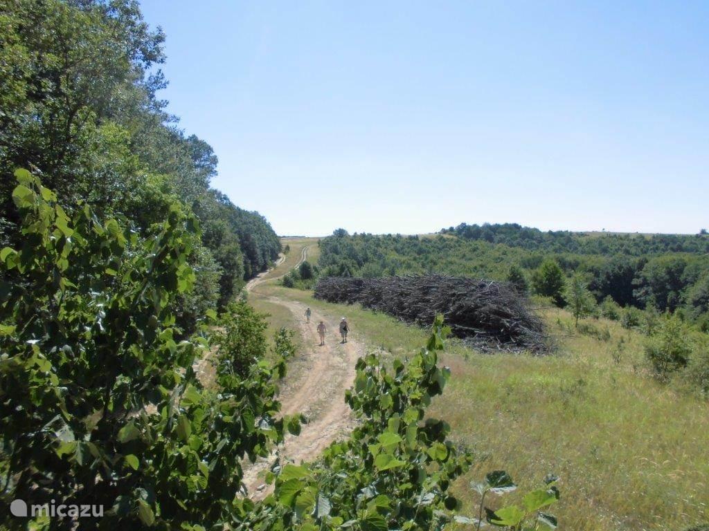 Er zijn vele plaatsen in de natuur om te fietsen of te lopen het is er zeer uitgestrekt.